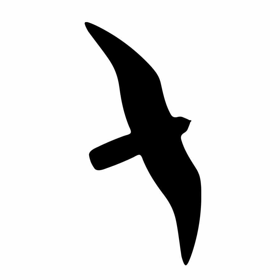 vogelschutzfolie.falke