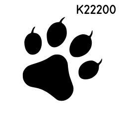 K22200